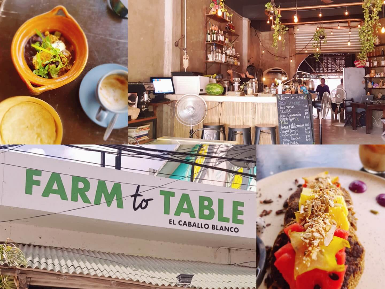 Frühstück im Farm to table Tulum Mexico